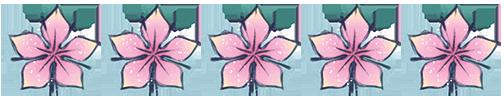 five starflower review